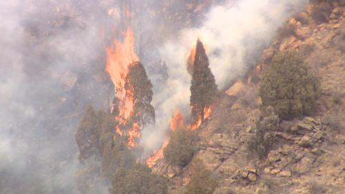 Funding Sought For Preventing Wildfires