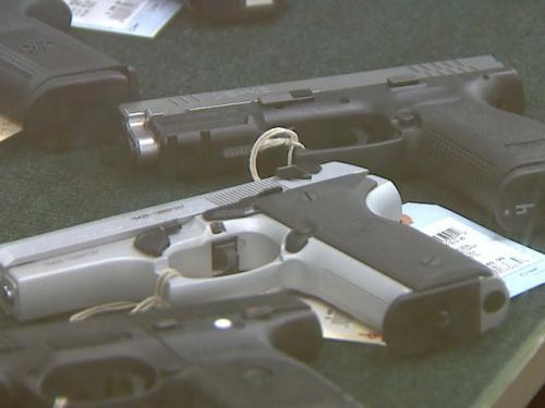 Panel Would Study Gun Restrictions On Mentally Ill