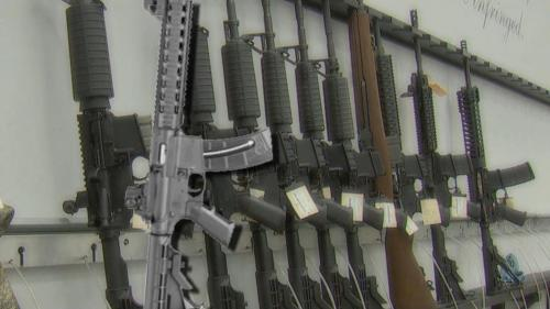 States Seek To Fix Gun Background Check Backlog